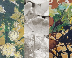 Contemporary painting of flowers